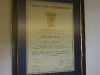 sfa-membership-certificate