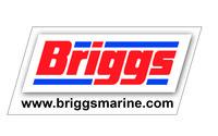 wee-briggs
